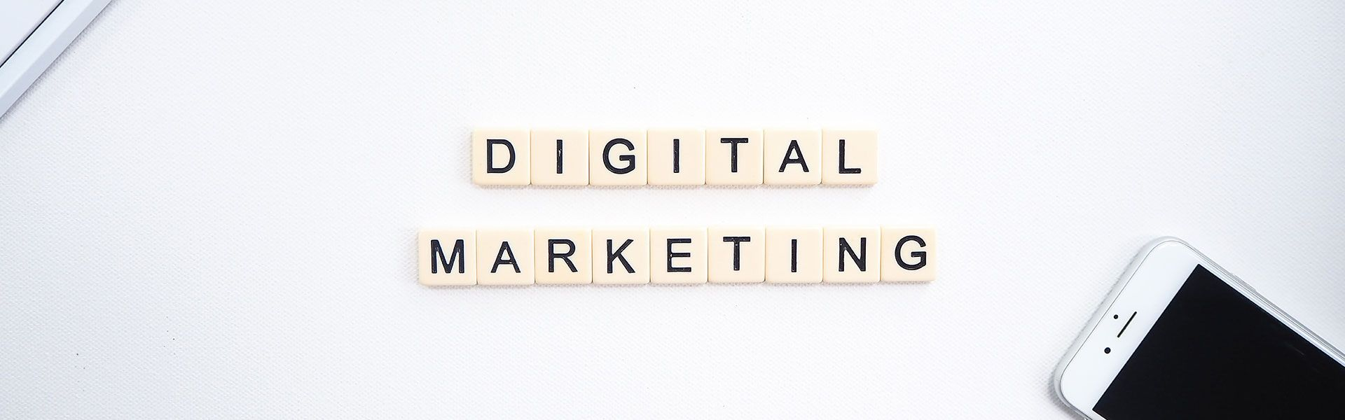 Digital Marketing Essex